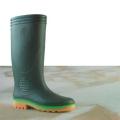 AP Boots 2003 GR
