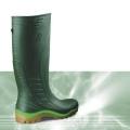 AP Boots 2006 GR