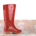 AP Boots Lady